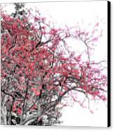 Winter Berries Canvas Print by Scott Hovind