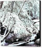 Winter In Shenandoah Canvas Print by Thomas R Fletcher