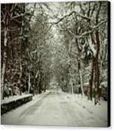 Winter Canvas Print by Thomas Maes