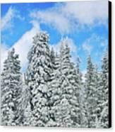 Winterscape Canvas Print by Jeff Kolker