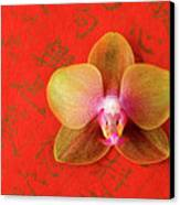 Wishes Come True Canvas Print by Julia Hiebaum