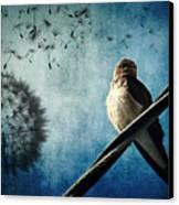 Wishing Swallow Canvas Print by Nancy  Coelho