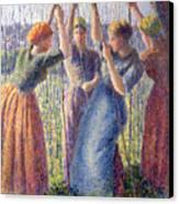 Women Planting Peasticks Canvas Print by Camille Pissarro