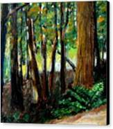 Woodland Trail Canvas Print by Michelle Calkins