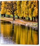 Yellow Autumn Canvas Print by Scott Hovind