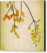Yellow Berries Canvas Print by Judi Bagwell