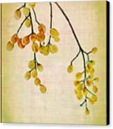 Yellow Berries Canvas Print by Judi Bagwell