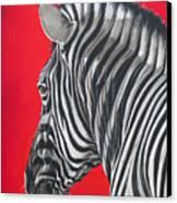 zebra in African sun Canvas Print by Ilse Kleyn