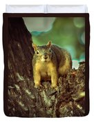 Fox Squirrel Duvet Cover by Robert Bales