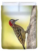 Hispaniolan Woodpecker Duvet Cover by Jim Nelson