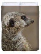 Meerkat Duvet Cover by Ernie Echols