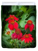 Coneflowers Echinacea Red  Duvet Cover by Rich Franco