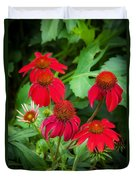 Coneflowers Echinacea Rudbeckia Duvet Cover by Rich Franco