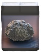 Dormant Water Bear Duvet Cover by Eye of Science and Science Source