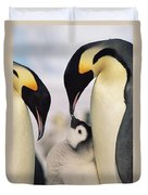 Emperor Penguin Parents With Chick Duvet Cover by Konrad Wothe