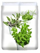 Fresh Herbs In Pots Duvet Cover by Elena Elisseeva