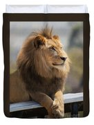 Majestic Lion Duvet Cover by Sharon Foster