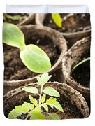 Seedlings growing in peat moss pots Duvet Cover by Elena Elisseeva