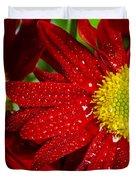 Spring Blossom Duvet Cover by Carlos Caetano