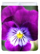 Viola Named Sorbet Plum Velvet Jump-up Duvet Cover by J McCombie