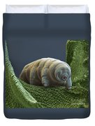 Water Bear Duvet Cover by Eye of Science and Science Source