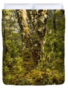 Ancient Woods Duvet Cover by Tim Hester