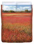 Autumn Blueberry Field Maine Duvet Cover by Scott Leslie