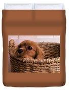 Cavalier King Charles Spaniel Puppy In Basket Duvet Cover by Edward Fielding