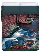 Chesterfield Gorge New Hampshire Duvet Cover by Edward Fielding