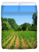 cultivated land Duvet Cover by Carlos Caetano