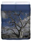 Ghost Tree Duvet Cover by Debra and Dave Vanderlaan
