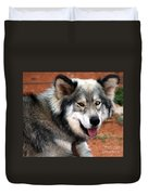 Miley The Husky With Blue And Brown Eyes  Duvet Cover by Doc Braham