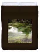 Spring Water Duvet Cover by Les Cunliffe