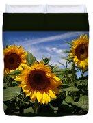 3 Sunflowers Duvet Cover by Kerri Mortenson