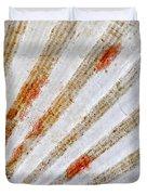 Seashell surface Duvet Cover by Elena Elisseeva