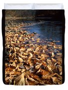 Ussurian Taiga Autumn Duvet Cover by Anonymous