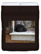 A Circled Up Cat  Duvet Cover by Lainie Wrightson