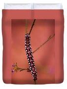 A Little Caterpillar Duvet Cover by Jeff Swan