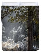 A North Woods Fairy Tale Duvet Cover by Mary Amerman