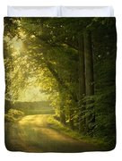 A Path To The Light Duvet Cover by Evelina Kremsdorf