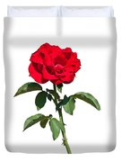 A Red Rose on White Duvet Cover by John Bailey
