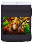 A Slow Snail Duvet Cover by Jeff Swan