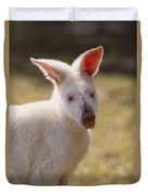 Albino Wallaby Duvet Cover by Art Wolfe