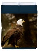 American Bald Eagle Awaiting Prey Duvet Cover by Douglas Barnett