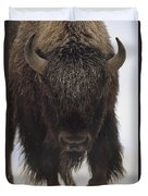 American Bison Portrait Duvet Cover by Tim Fitzharris
