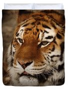 Amur Tiger Duvet Cover by Ernie Echols