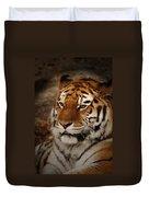 Amur Tiger Duvet Cover by Ernie Echols