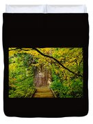 An Old Growth Douglass Fur In The Grove Of The Patriarches Mt Rainer National Park Duvet Cover by Jeff Swan