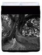 Ancestor Duvet Cover by Amanda Barcon