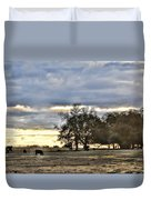 Angus Evening Duvet Cover by Jan Amiss Photography